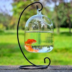 Small Glass Vase Creative Fish Tank Aquarium Fish Bowl Decoration For Hotel (Include The Stand+B ...