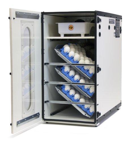 GQF Professional Egg Incubator Cabinet Digital LCD Display