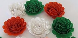 6 Roses, Ireland Tricolor Flag Colors, Orange White Green, Irish American Wedding Decorations, L ...