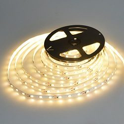 WenTop Led Strip Lights Waterproof Led Tape Light 12v SMD 3528 16.4 Ft (5M) 300leds 60leds/m War ...