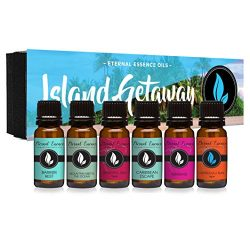 Island Getaway Gift Set of 6 Premium Fragrance Oils – Barrier Reef, Mountain Meets The Oce ...