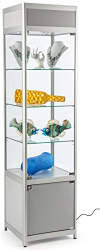 Displays2go Glass Display Case, Cabinet Base, Locking Door, Adjustable Shelves (3), Silver (SCTW ...