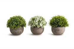 OPPS Artificial Plastic Mini Plants Unique Fake Fresh Green Grass Flower In Gray Pot For Home Dé ...