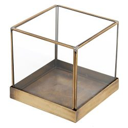 5 inch Vintage Brass Frame and Glass Display Case, Decorative Cube Plant Terrarium