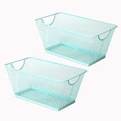 SLPR Office Desktop Organizer Wire Basket (Set of 2, Aruba Blue) | Classroom Craft Room Kitchen  ...