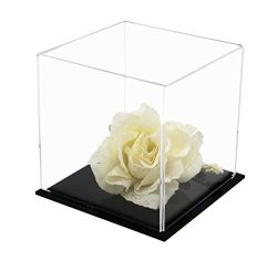 Versatile Acrylic Display Case, Cube, Dust Cover and Riser 4″ x 4″ x 4″ (A057-CDS)