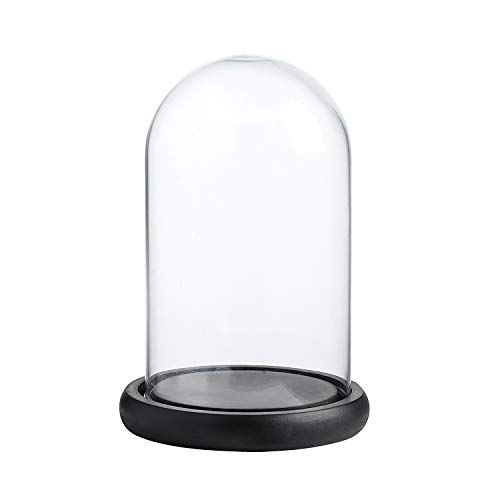 Whole Housewares Decorative Clear Glass Dome/Tabletop Centerpiece Cloche Bell Jar Display Case w ...