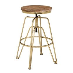 Linon Wooden and Metal Adjustable Bar Stool in Brown and Gold