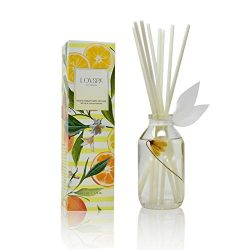 LOVSPA Coastal Citrus Scented Reed Diffuser Oil and Sticks Gift Set | Air Freshener for Bathroom ...
