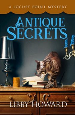 Antique Secrets (Locust Point Mystery Book 3)
