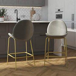 CosmoLiving by Cosmopolitan Astor Upholstered Counter, Light Grey Velvet with Brass Metal Leg Ba ...