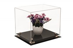 Better Display Cases Versatile Clear Acrylic Display Case – Medium Rectangle Box with Gold ...